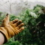 Entretien de jardin : combien coûte l'intervention d'un jardinier ?